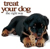 treat your dog the right way